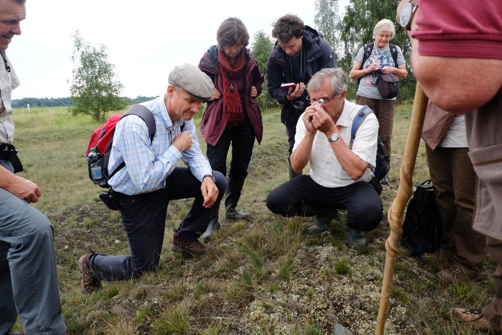 Dieter-Frank-Ulrich-Kison-Oker-bei-Wülperode-Exkursion-Bot-Verein-26.8.2017-DSCF5084-cx