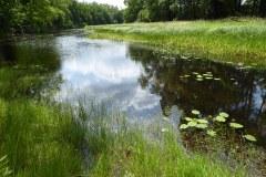 Exkursion-Tiergarten-2020-Guido-Warthemann-P1020748