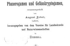 Zobel 1905 Flora-Anhalt, Titelbild