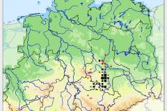 Verbreitungskarte Astragalus excapus, Quelle: www.floraweb.de