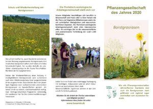 Flyer zur Pflanzengesellschaft des Jahres